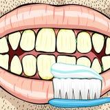 Toothbrush Foto de Stock