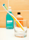 Toothbrush Fotografia de Stock Royalty Free