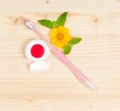Toothbrush cor-de-rosa Fotografia de Stock Royalty Free