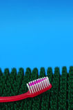 Toothbrush dental health. Pink toothbrush on synthetic grass mat. Dental hygiene concept Stock Photos