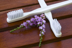 Toothbrush with flower Stock Photo