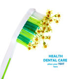 Toothbrush with flowers Stock Photos