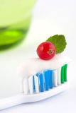 Toothbrush With Fresh Minty Toothpaste. Bristles of a toothbrush with fresh minty toothpaste topped with a red berry and green leaf Stock Images
