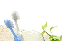 Toothbrush and glass Stock Photo