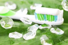 Toothbrush on green leaf Royalty Free Stock Photo