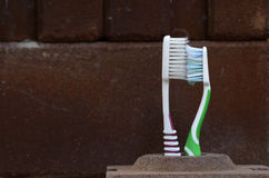 Toothbrush kiss Royalty Free Stock Photo