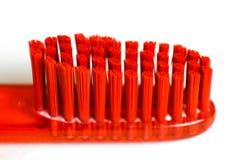 toothbrush Macro primer en un backgroun blanco imagenes de archivo