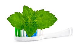 Toothbrush with mint Stock Image