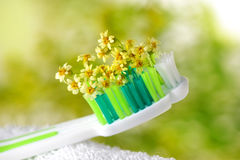 Toothbrush with tiny flowers. Healthcare stock images
