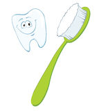 Toothbrush and tooth Stock Photo