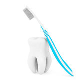 Toothbrush and tooth Stock Photography
