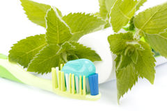 Toothbrush, toothpaste and fresh leaves of mint Royalty Free Stock Photography