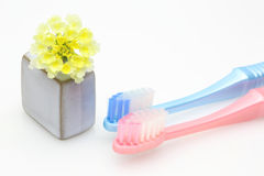 Toothbrush in a white background Stock Photography