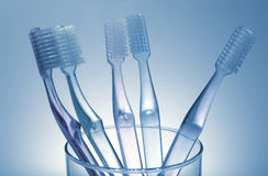 Toothbrushes immagine stock