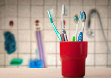 toothbrushes Obraz Stock
