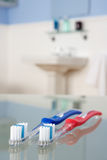 Toothbrushes in bathroom Stock Images