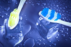 Toothbrushes em cubos de gelo Foto de Stock Royalty Free