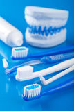 Toothbrushes and individual plaster dental molds Stock Photos