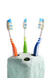 Toothbrushes. (orange, green, and blue) in blue stand on a white background Stock Images