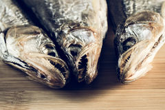 Toothed dried smelt snack to beer Stock Photos
