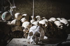Toothless skull in Fontanelle cemetery. Stock Photography