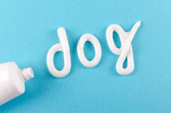 Toothpaste for dogs, animal teeth care concept, on blue background. Flat lay stock image