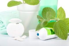 toothpaste för leavesminttandborste arkivfoto