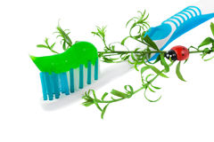 ToothPaste on the light blue Dental Brush isolated Stock Images