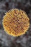 toothpick fotografia de stock