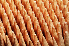 Toothpicks at attention. Wooden toothpicks standing side-by-side Royalty Free Stock Photo