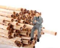 Toothpicks. Beautiful shot of miniature figurine sitting on wooden toothpick Royalty Free Stock Photo