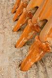 Tooths van graver Royalty-vrije Stock Afbeeldingen