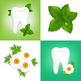 Tooths. Vector Royalty Free Stock Photos
