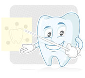 Toothy the dentist. Healthy tooth giving instruction to audience Stock Images