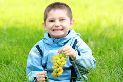 Toothy smiling boy with grapes. Toothy smiling boy with bunch of grapes sitting in green grass Stock Photos