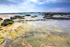 Toowoon Bay Reefs Stock Photography