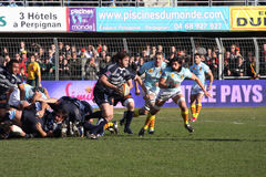 Top 14 rugby match USAP vs Castres Stock Photos
