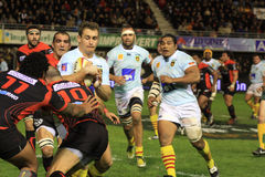 Top 14 rugby match USAP vs RC Toulon Royalty Free Stock Images