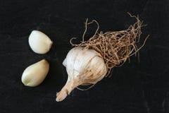 Top abajo de la visión, bulbo natural del ajo con las raíces, dos clavos pelados, en tablero negro imágenes de archivo libres de regalías