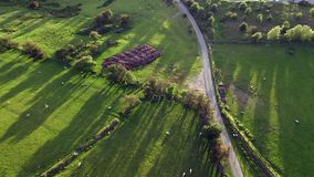 Top abajo del lanzamiento aéreo de los campos de cultivo escénicos en la puesta del sol metrajes