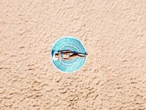 Aerial Drone View Of Woman In Swimsuit Bikini Relaxing And Sunbathing On Round Turquoise Beach Towel Near The Ocean Stock Photos