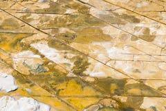 Top aerial view of sandstone rocks pattern on Australian coastline. Stock Photography