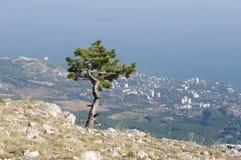 On top of AI-Petri plateau, view of  coast, Crimea. Royalty Free Stock Images