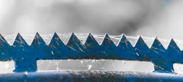 Top azul resistido del zigzag de una cerca cubierta por una telaraña Foto de archivo