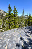 Top of Basalt Formations at Devil's Postpile National Monument Royalty Free Stock Photos