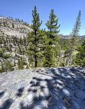 Top of Basalt Formations at Devil's Postpile National Monument Stock Photography