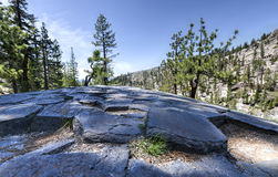Top of Basalt Formations at Devil's Postpile National Monument Stock Photo