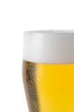 Top of beer glass Stock Images