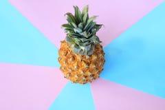 Top beskådar mogen ananas på en ljus bakgrund Royaltyfri Fotografi