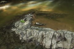 Top of rocks in shallow water. Top of big dry grey rocks in shallow murky waters Royalty Free Stock Photo